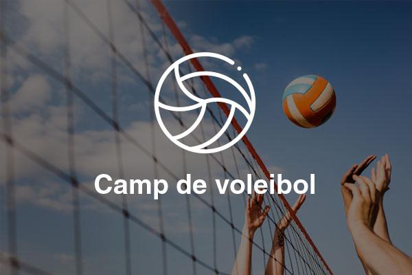 camp voleibol