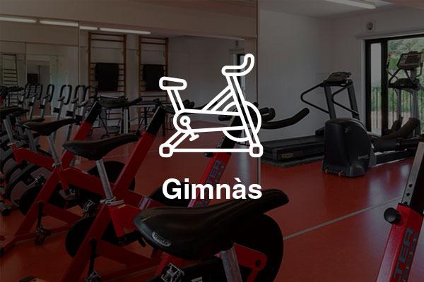 gimnas