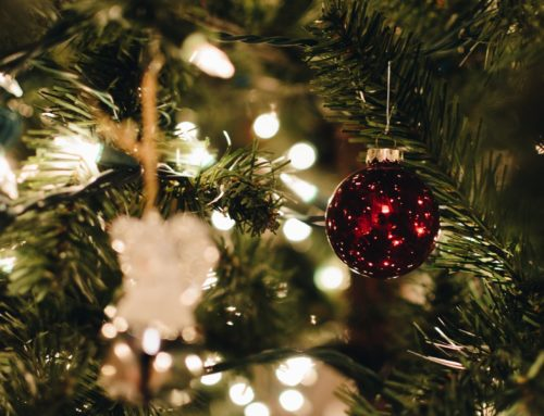 Christmas routes from Unihabit university residences