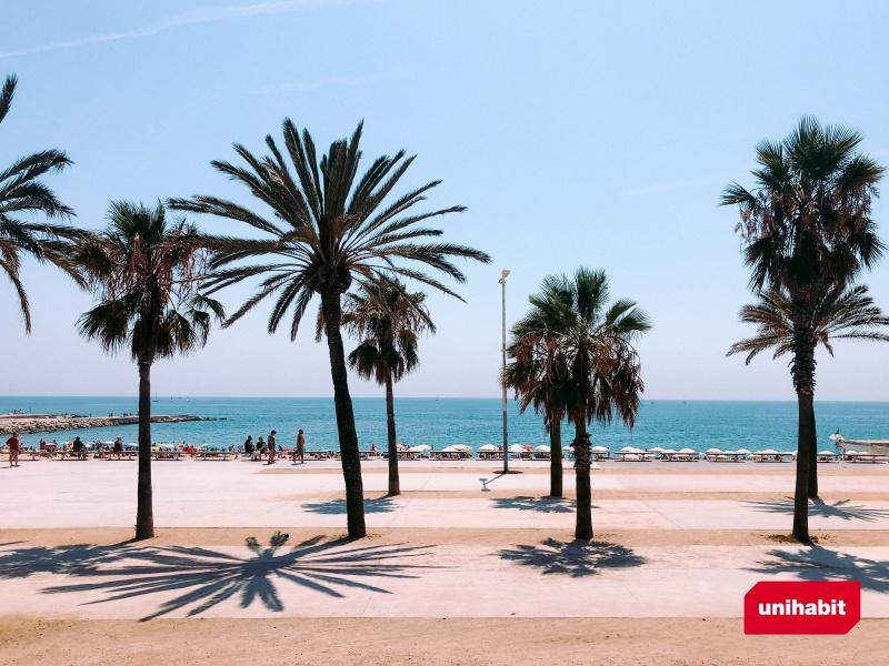 5 razones por las que estudiar en barcelona